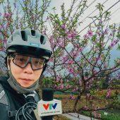 Hoa đào nở khoe sắc đón xuân 2021 (4K)